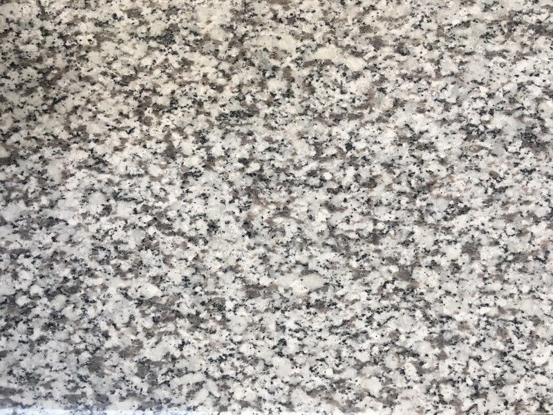New G439 granite countertops Grey Granite Slabs / Polished  Slabs Custom Size